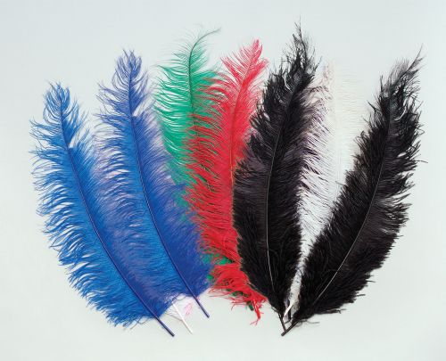 Spadone Feathers Craft Making Gift Craft Making Hobby
